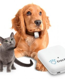 Tracker GPS pour animaux Tractive Pet Tracking - Tractive - tracker